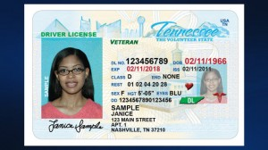 Reinstate Suspended Tennesee Drivers License