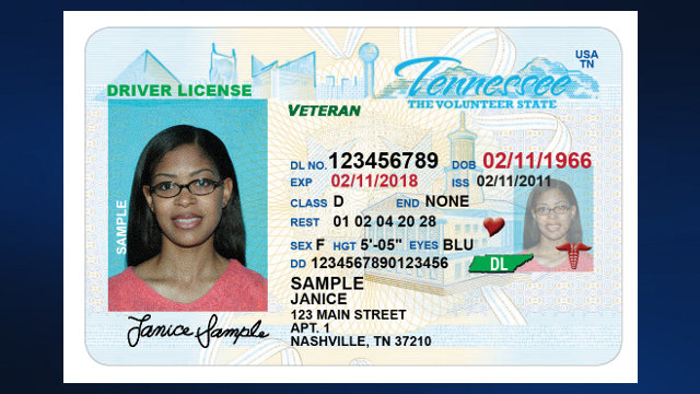 Texas temporary id template related keywords texas for Tennessee drivers license template